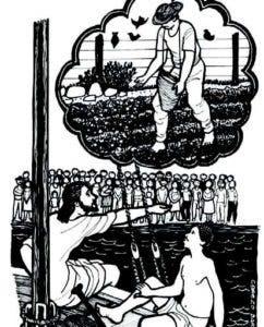 DESDE LOS TEJADOS: El sembrador examina nuestra fe