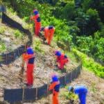 La Barrick implementa un Sistema de Gestión Ambiental