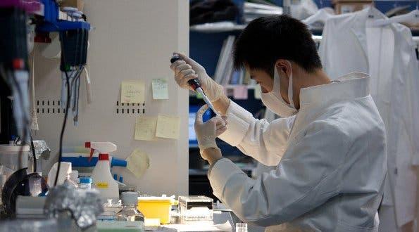 Los científicos japoneses, tras varias pruebas dermatológicas, han creado una malla electrónica con materiales finos que evitan la sudoración y el bloqueo de aire en la piel.