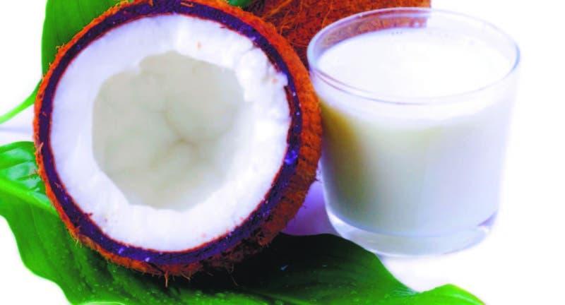 El Caribe se está quedando sin cocos en el peor momento posible para la región. Esto está a punto de cambiar gracias a un programa de