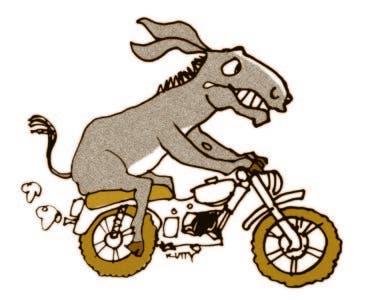 """""""Ayyy… ¡Los burros y los motores!"""""""