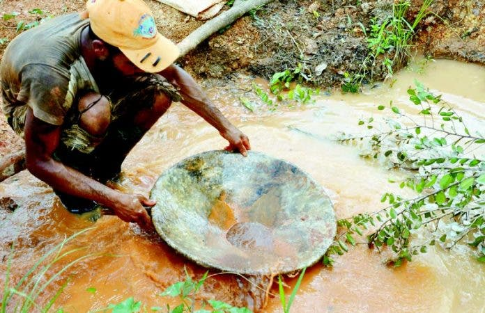 Gensy Díaz lava tierra en busca de oro en la comunidad La Mina de Miches, provincia El Seibo, donde muchos se dedican a esta actividad.