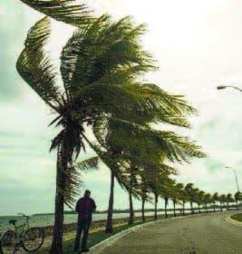 Primeros efectos de Irma