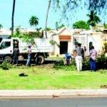 Brigadas del ADN en labor de poda y recolección de ramas en el cementerio Cristo Redentor
