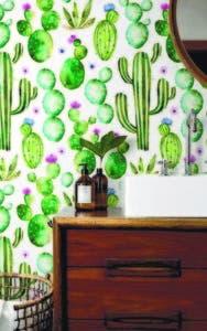Puedes colocar papeles pintados con diversas clases de cactus