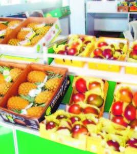 El país tiene todas las condiciones para aumentar la producción de frutas tropicales para exportación.