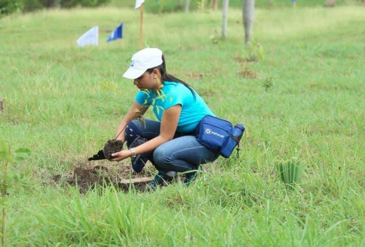 Empleados del Popular siembran más de 2,600 árboles en el «Plan Sierra»