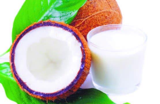 Tratarán potencial económico de la producción de coco.