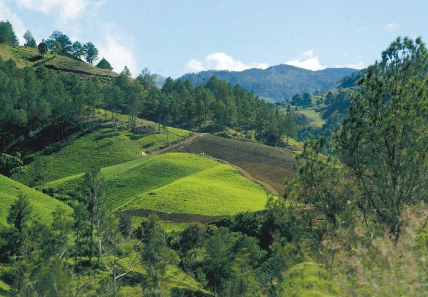 Pactan acciones conjuntas para agricultura y medio ambiente