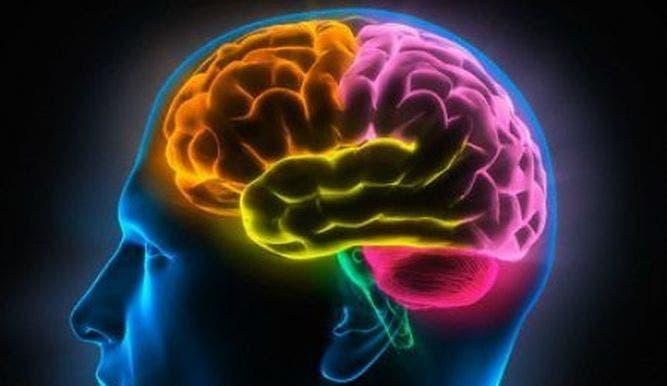 Desarrollan dispositivo para clasificar lesiones cerebrales