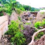 Los daños causados por el huracán María