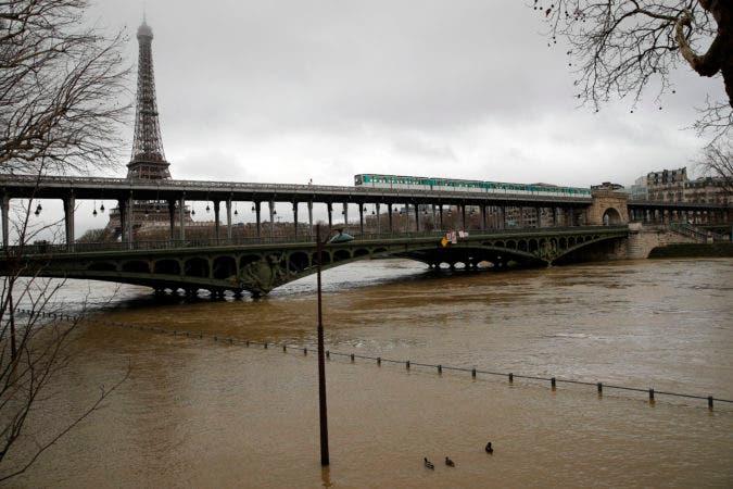 Esta fotografía muestra a unos patos nadar sobre una calle inundada al lado del río Sena el martes 23 de enero de 2018 en París. Los niveles de agua del Sena han aumentado cerca de 3,3 metros sobre el nivel normal. (AP Foto/Christophe Ena)