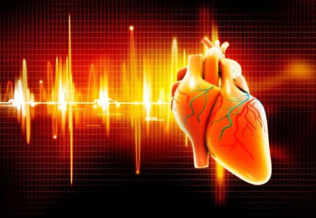 Cuando falla el ritmo cardíaco: la fibrilación auricular