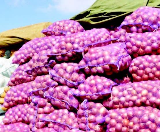 La libra de cebolla se vende a RD$50.00