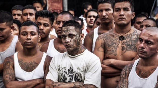 FBI: Mara Salvatrucha usa más violencia y deja los tatuajes para camuflarse