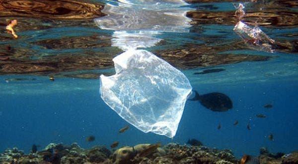 El plástico vertido en el de Mar hace crecer bacterias marinas, según un estudio