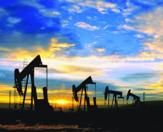 La compañía petrolera puso en producción más de doce pozos