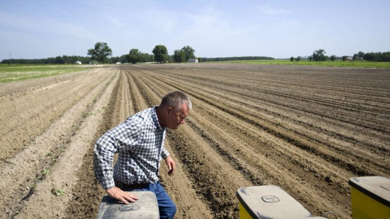 """In this June 21, 2018, photo, Parrish Akins walks behind his tractor while planting cotton seeds on his farm in Nashville, Ga. Akins estimates that 50 percent of his cotton is exported out of the country, China being one of the main recipients. """"We're very concerned about tariffs,"""" said Akins, who despite the potential effects on his business supports Trump's policy on tariffs. """"We'll suffer in the short term but the long term effects of fair trade will be positive for American agriculture and American industry."""" (AP Photo/David Goldman)"""