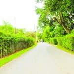 """Carretera """"Mayobanex Vargas"""" en La Salvia-Los Quemados, Bonao. Hoy/ Aracelis Mena"""