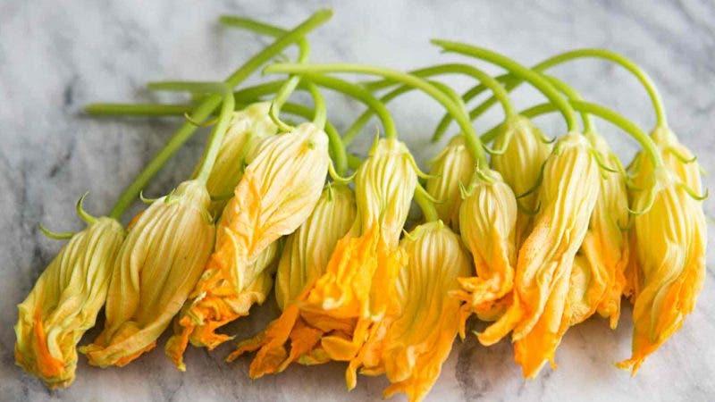 comidas con flores de calabaza