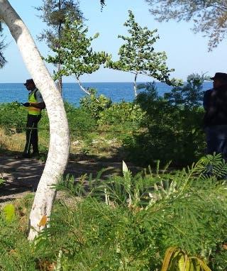 Comerciante que había sido reportado desaparecido es hallado colgando en un árbol