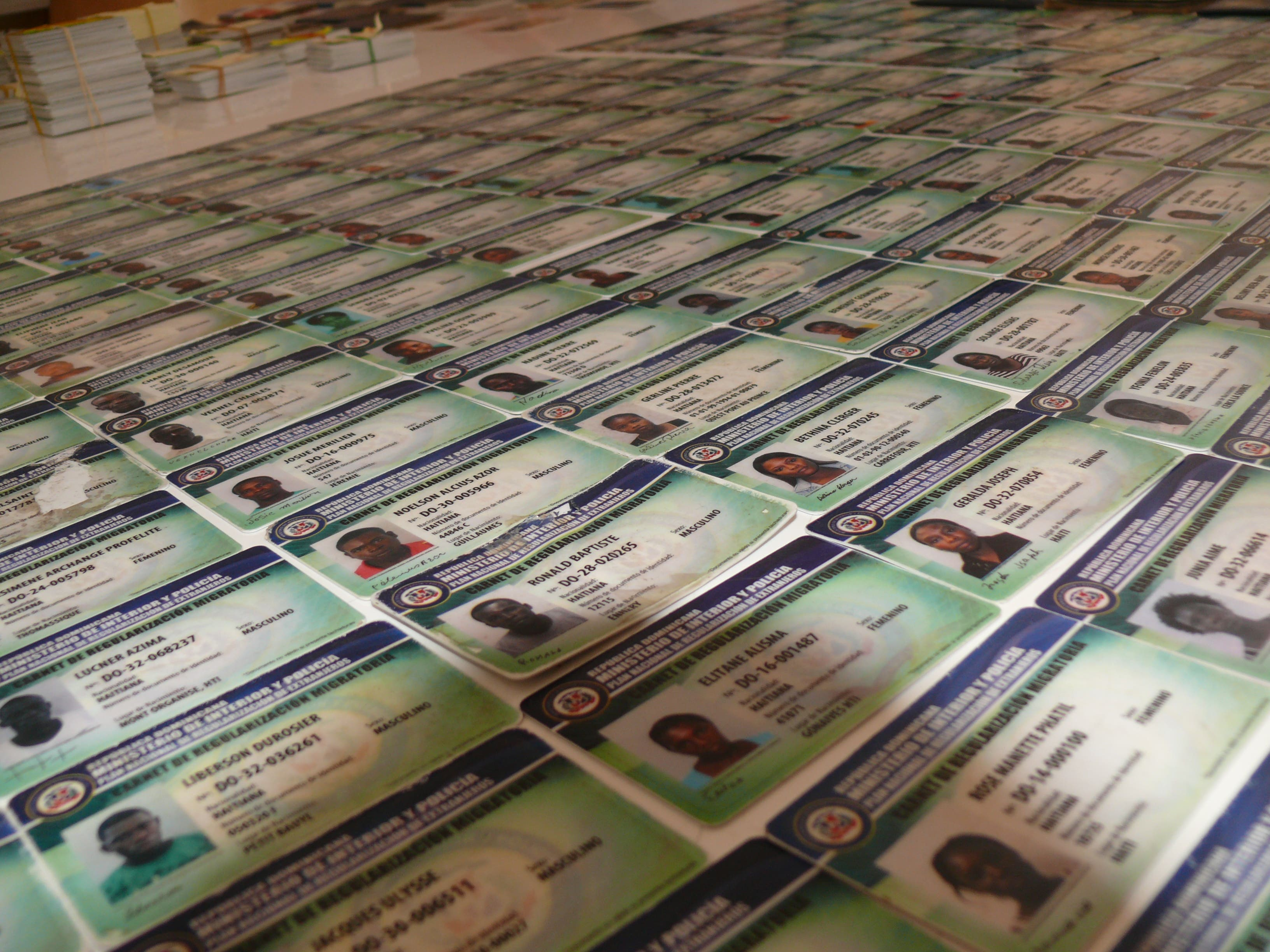 Migración decomisa 1,406 carnés y documentos falsificados del PNRE
