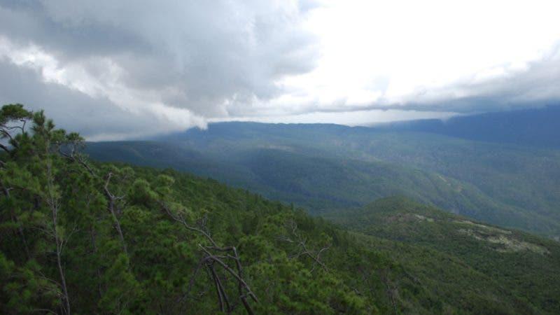 El Ministerio de Medio Ambiente vigila no se destruyan  bosque de la sierra de Bahoruco. Hoy/ Fuente externa 30/08/2010
