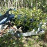 Helicóptero que desapareció con cinco turistas más el piloto Batey Cacata pertenece a La Romana en República Dominicana. 23 de noviembre de del 2018. Foto Pedro Sosa