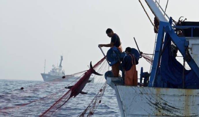 Otros siete dominicanos detenidos en Bahamas por pesca ilegal