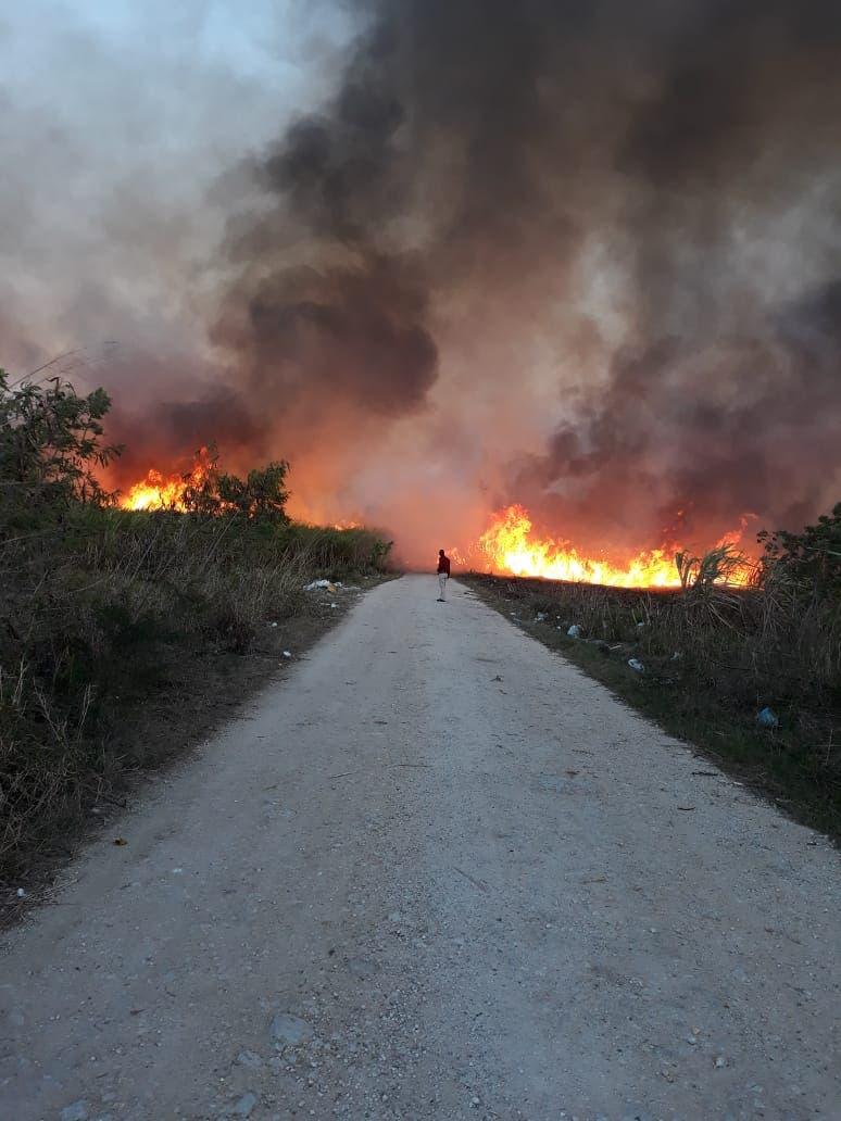 ETED denuncia sabotaje de línea de transmisión en La Romana