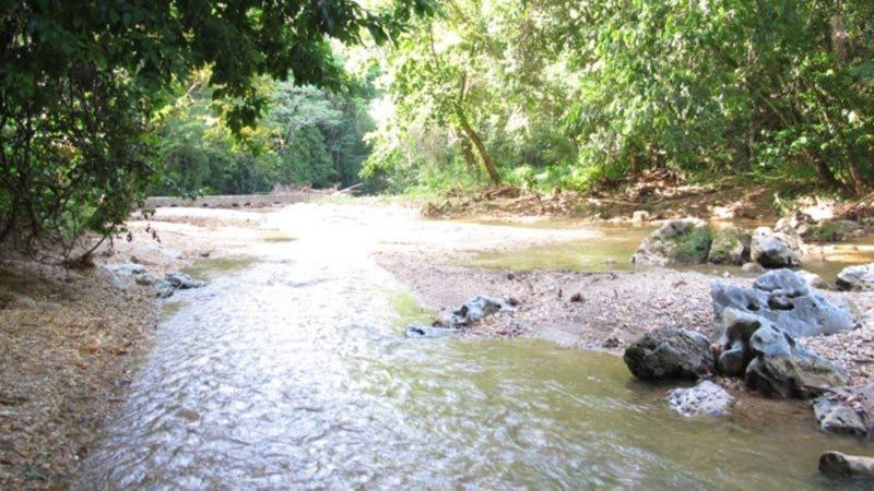 Reportaje rios.Rio Nizao.Hoy/Fuente Externa 9/12/13
