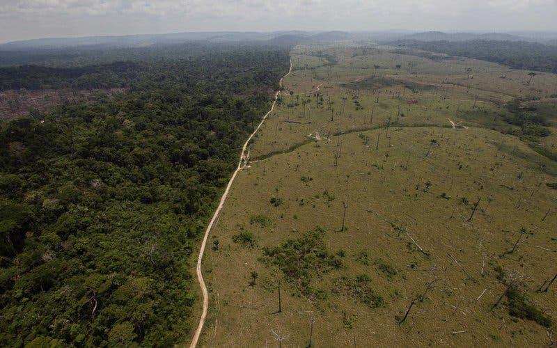 ¿Qué hay detrás de la cancelación de una reunión de la ONU sobre cambio climático en Brasil?
