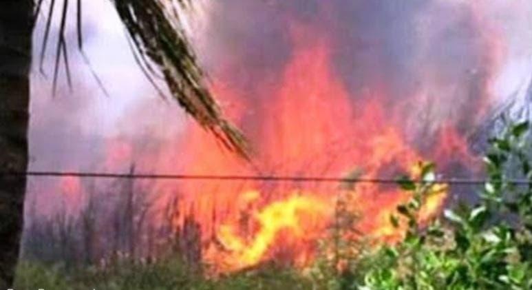 Fuego afecta Palacio de los Deportes de Puerto Plata