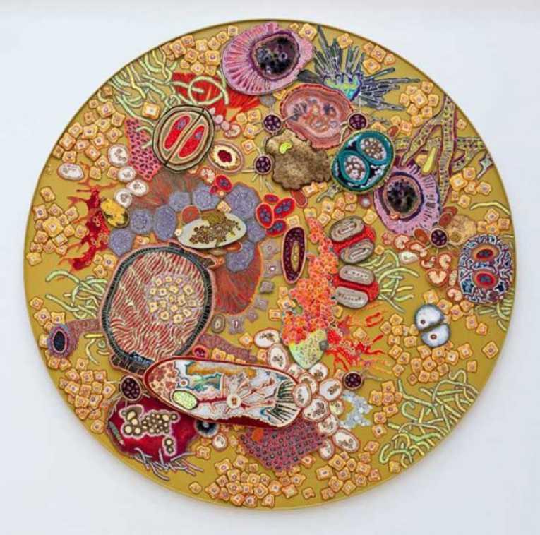 Bacterias mortales hechas arte en el museo del organismo sanitario de EE.UU