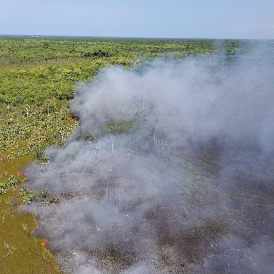 Brigadas de Obras Públicas y el Ejército sofocan incendio forestal en Cabeza de Toro