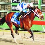6B_Deportes_17_2,p01