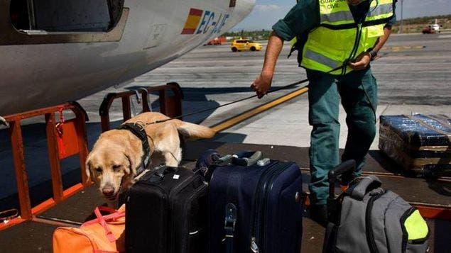 Detenido un colombiano por intentar volar con 68 aves ocultas en dos maletas