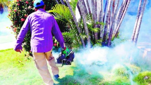 Cuba confía utilizar bacteria y la esterilización de mosquito macho para acabar con dengue
