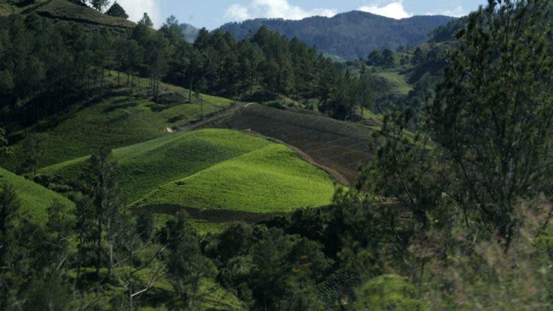 Recorrido parque de valle nuevo de Constanza ,donde los campesino están ocupando zona protegida por medio ambiente  en foto : el valle de Constanza  HOY Duany Nuñez 2-11-2016