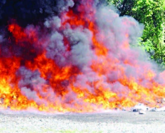 La droga incinerada ayer por las autoridades.