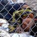 SEG1-Detained-Migrant-Children-1