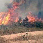 salvar-Amazonia-pulmon-planeta-asfixiado_EDIIMA20190823_0037_4