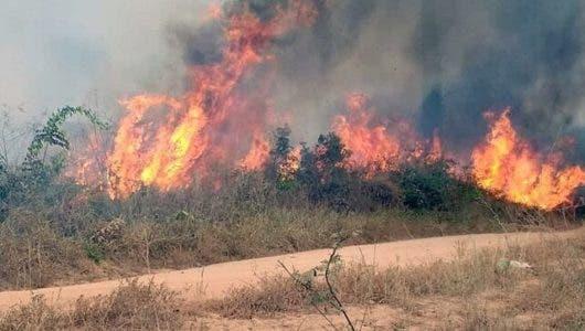 """El mundo exige salvar la Amazonía, """"pulmón del planeta"""" asfixiado en llamas"""