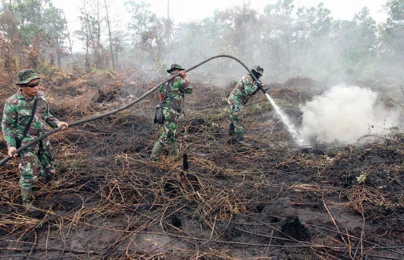 """El aire de Singapur alcanza niveles """"insalubres"""" por los humos contaminantes de los incendios de Indonesia"""