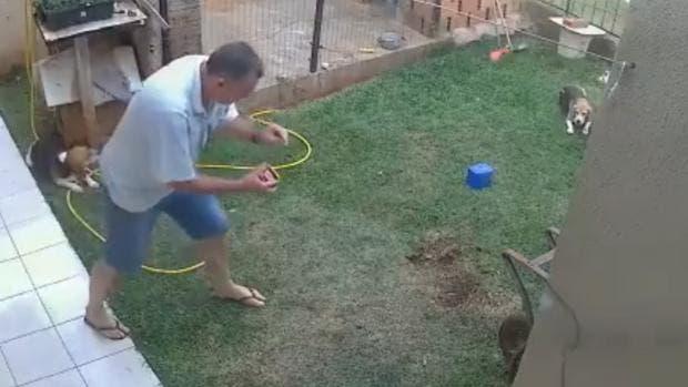 Video: ¡Insólito! Vea como hombre hace explotar jardín al prender fuego a nido de cucarachas