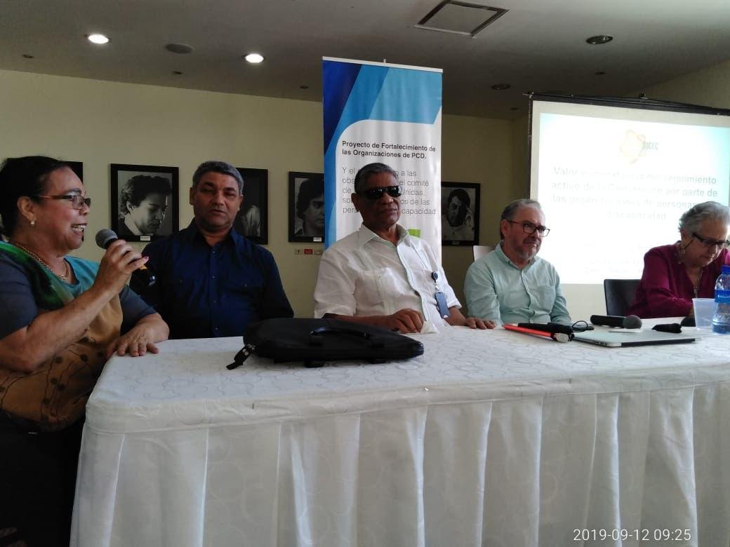 Entidades realizan seminario-taller con el fin de analizar la situación de las personas con discapacidad