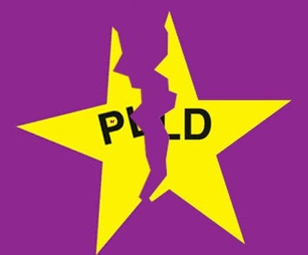Peledeístas Nueva York y Nueva Jersey renunciarán en masas del PLD para seguir a Leonel Fernández