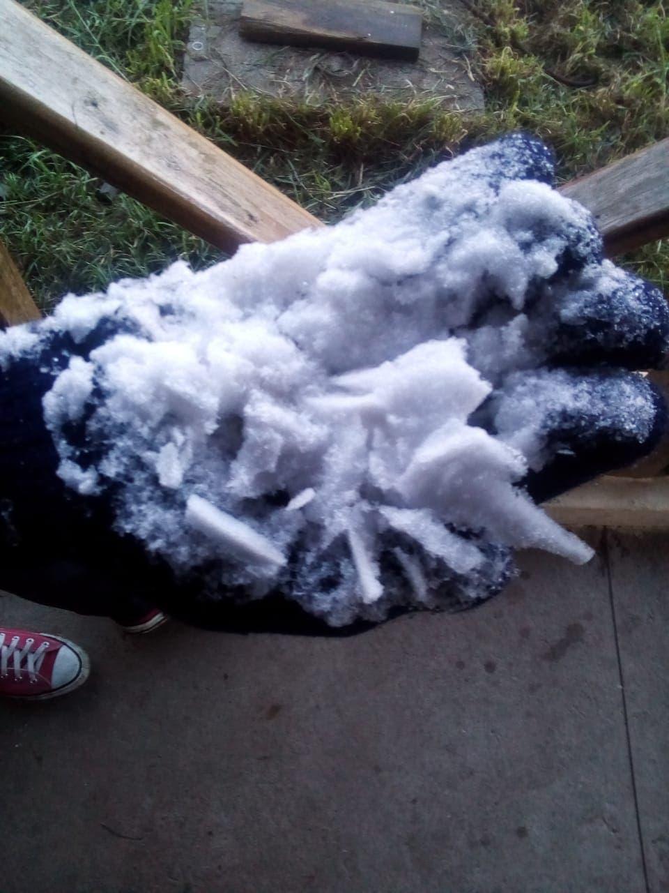 Fotos: Así de congelado se encuentrael Parque Nacional de Valle Nuevo; temperaturas de hasta -4°C