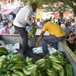 Ventas de plátano y guineo a bajos precios, auspiciadas por el Minterio de Agricultura.