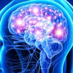 conexiones neuronales